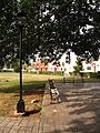 Valladolid park.jpg