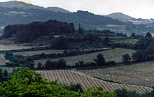 Vaqueyras vineyards, Provence 1993.jpg