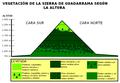 Vegetación de Guadarrama.PNG