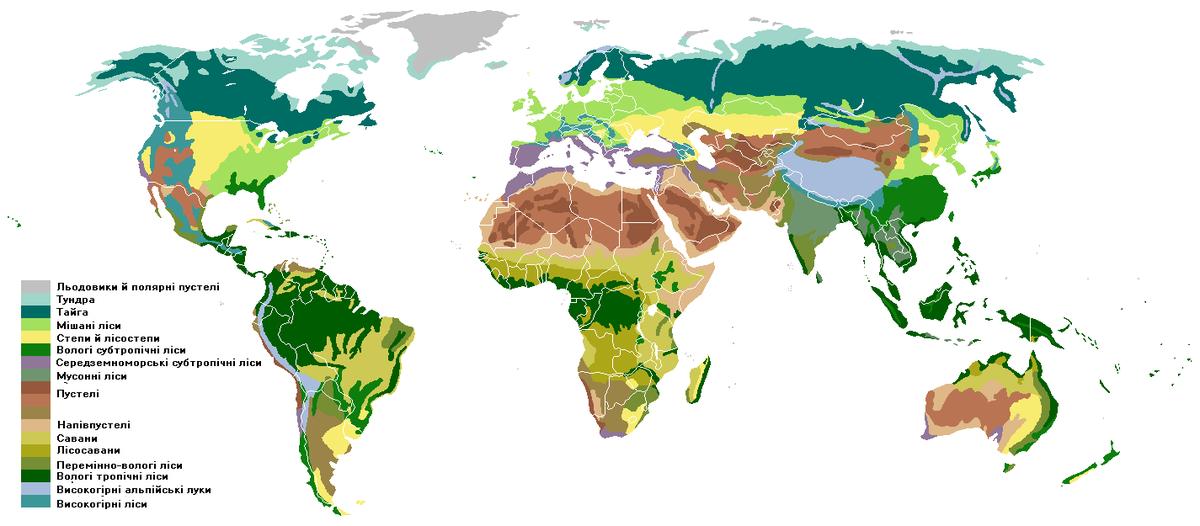 Результат пошуку зображень за запитом природні зони світу