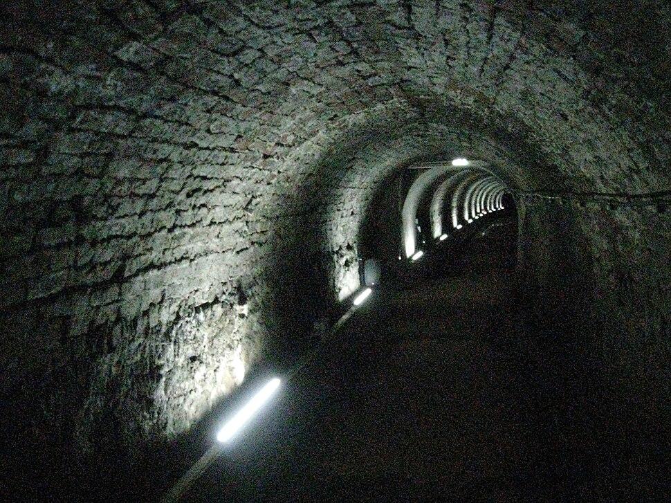Victoria Tunnel (Newcastle) near Ouse Street 2010-02-19