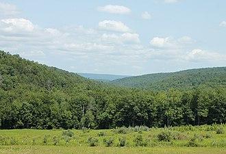 Jackson Township, Columbia County, Pennsylvania - A view of Jackson Township looking north