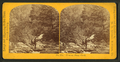 View on Stony Creek, by M. A. Kleckner.png