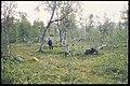 Vilasund - KMB - 16001000059686.jpg