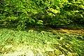 Vintgar Gorge (35771575766).jpg