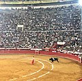 Waiting for the bull - Plaza Mexico.jpg