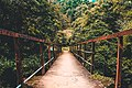 Walk on Riverstone bridge, Srilanka.jpg