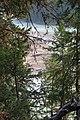 Wapta Falls IMG 4986.JPG