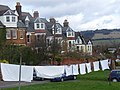 Washing on the Green - geograph.org.uk - 1193181.jpg