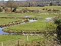 Water meadows behind Breamore Mill, river Avon - geograph.org.uk - 375452.jpg