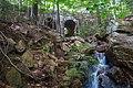 Waterfall by Deer Brook Bridge, Acadia Nat'l Park.jpg