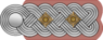 Wehrmacht Heer Colonel insignia horizontal.png