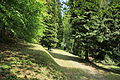 Werdohl - Landwehr - Friedhof 01 ies.jpg