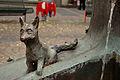 Werne-20090522-schlau-wie-ein-Fuchs-DSC 7118.jpg