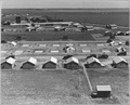 Westley, Stanislaus County, San Joaquin Valley, California. Migratory labor camp (F.S.A.) seen from . . . - NARA - 521762.tif