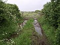 Wet gateway - geograph.org.uk - 475529.jpg