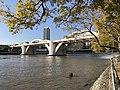 William Jolly Bridge seen from South Brisbane.jpg