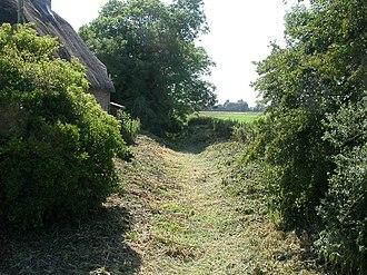Winterborne Muston - The dry River Winterborne at Winterborne Muston.