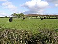 Woodlands Townland - geograph.org.uk - 999733.jpg