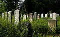 Wroclaw Old Jewish Cemetery IMGP7076.jpg