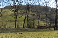 Wuppertal Brink 2015 024.jpg