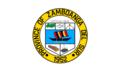 Zamboanga del Sur gov. Flag.png