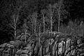 Ziegenrückenklippen, Okertal, Naturpark Harz.jpg