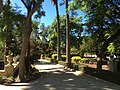 """""""000 San Anton Palace Garden 022"""".jpg"""