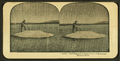"""Larry"" Catching and Cooking Trout, Yellowstone National Park, from Robert N. Dennis collection of stereoscopic views 4.png"