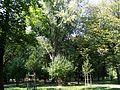 Łódź, park Źródliska, 1840 -2.JPG