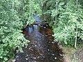 Большая Уя (река, впадает в Онежское озеро) 1.jpg