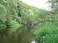 """Вид на реку Нара около водопада """"Радужный"""" - panoramio.jpg"""