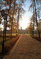 Дворец Ольденбургских - panoramio.jpg