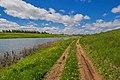 Дорога вдоль озера Заячье.jpg