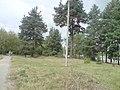 Дорога к городу - panoramio (2).jpg