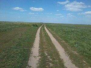 Blagoveshchensky District, Altai Krai - Steppe landscape