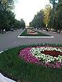 Клумбы в сквере на ул. Славы, 2009 год - panoramio.jpg