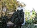 Комплекс дач-готелів П. І. Губоніна 12.JPG