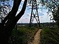 Летнее дерево на фоне летней вышки - panoramio.jpg