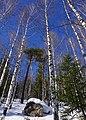 Национальный парк Таганай (26).jpg