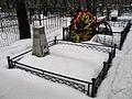 Новолужинское кладбище - panoramio (1).jpg