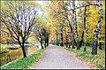 Осень в Сокольниках - panoramio.jpg