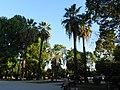 Парк пальм - panoramio.jpg