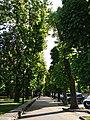 Парк імені Шевченко у місті Хмельницькому, 4.jpg