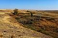 Речка Кураша. Вид в юго-восточном направлении - panoramio.jpg
