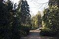 Сирецький дендрологічний парк 17.jpg