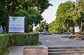 Сквер Шевченка у Тернополі влітку.jpg