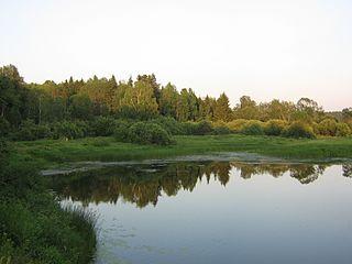 Buysky District District in Kostroma Oblast, Russia