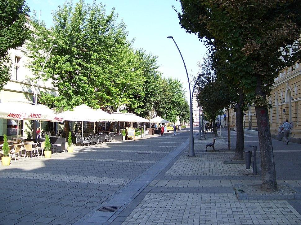 Улица Господар Јевремова у Шапцу.jpeg