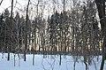 Ясная Поляна. Фото 31.jpg